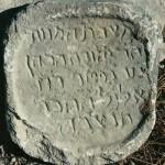 1666-hacohen
