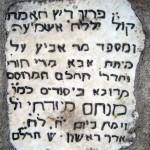 12-menahem-mizrahi