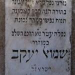 8-samuel-yakov-israel-1920